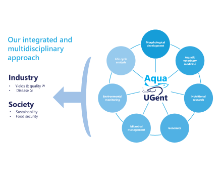 Our integrated approach