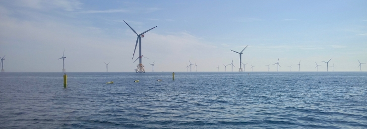 Edulis: Offshore mussel culture in wind farms